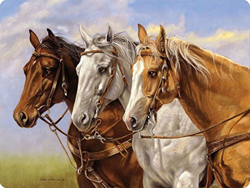 River's Edge Three of a Kind Horse Group Horse Tempered G...