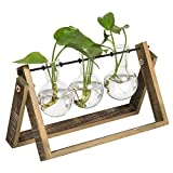 MyGift 3-Glass Planter Bulb Vases with Wood & Metal Swivel Stand