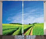Ambesonne Farmhouse Decor Collection, Summer Field Trees Sky Pathway Natural Environment Sunny Day Cloudscape Image Print, Living Room Bedroom Curtain 2 Panels Set, 108 X 84 Inches, Green Blue For Sale