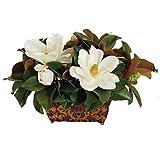 """Magnolias In Classic Rectangular Planter 14"""" Tall White"""