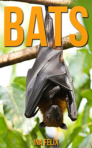 Bats: Children Book of Fun Facts & Amazing Photos on Animals