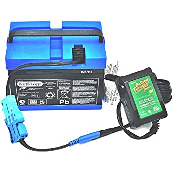 Peg Perego 12 Volt Blue Battery IAKB0501 and Fully Automatic Battery Tender Quick Charger Combo Pack by CBC