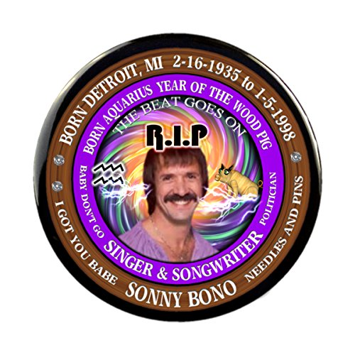 Sony Bono RIP Pins, Born Astrology Aquarius Zodiac Wood Pig (2.25