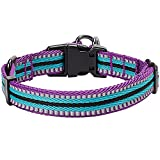 Blueberry-Pet-3M-Reflective-Multi-colored-Stripe-Dog-Collar-Dog-Safety-Car-Seat-Belt-Matching-Leash-Harness-Available-Separately