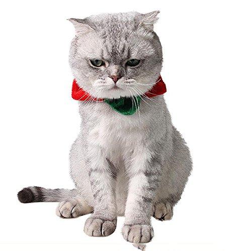 ANIAC Happy Cat Dog Star Shape Collar Cute Halloween Christmas Costume for Kitty Small Dogs]()