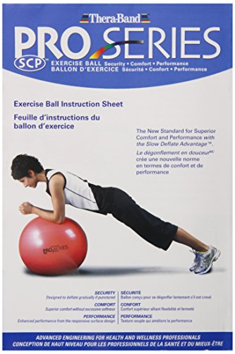 Thera Band Standard Exercise Balls 55cm