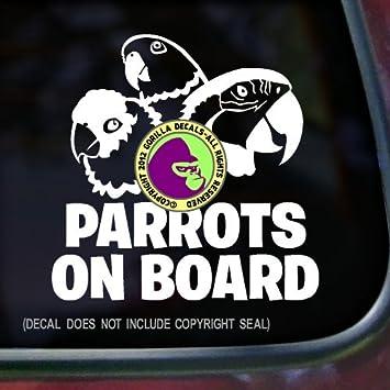 Amazoncom PARROTS ON BOARD Macaw Amazon Conure Bird Love Parrot - Bird window stickers amazon