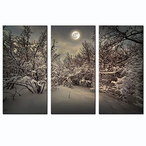 Live Art Decor - Winter Forest Canvas Wall Art,3 Panels Full Moon Landscape Picture Print on Canvas,Moonlight Wall Art for Home Bedroom Decoration,Framed Art (12