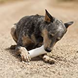 Filled Dog Bones
