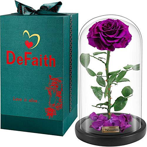 (DEFAITH Real Rose 13''H Beauty and The Beast Enchanted Rose, Preserved Fresh Rose in Glass Dome Romantic Forever Gift for Her Anniversary Valentine's Day Christmas Mothers Day - Ultra Violet, 13''H)
