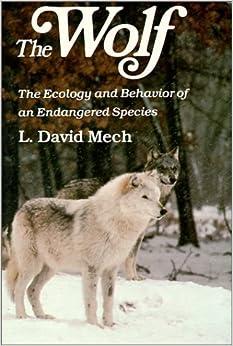 """Résultat de recherche d'images pour """"The Wolf david mech"""""""