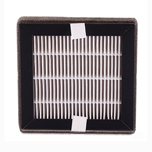 Citus Air Purifier Authentic HEPA Filter,Portable Air Conditioner Filter Replacement CT-JP09