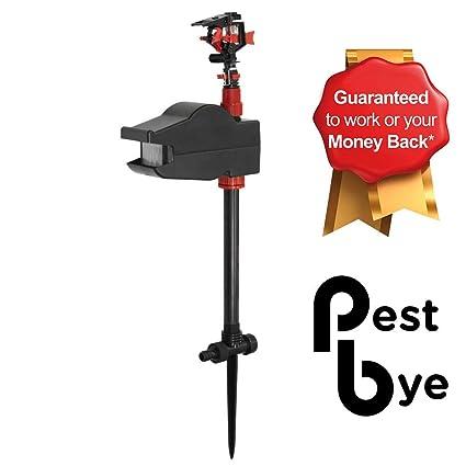 Amazon.com: PestBye – Aspersor jet activado por movimiento ...