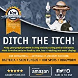 Jungle Pet Antifungal + Antibacterial Flush with