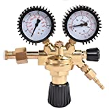 Goplus CO2 High Pressure Regulator Nitrogen Reducer Dual Gauge Gas Regulator 0-4500 PSI