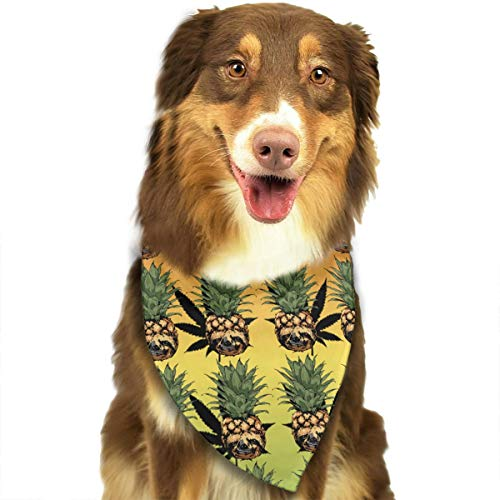 YanHill Cannabis Skull Pineapple Pet Bandana Triangle Dog Cat Neckerchief Bibs Scarfs Accessories for Pet Cats and Baby Puppies