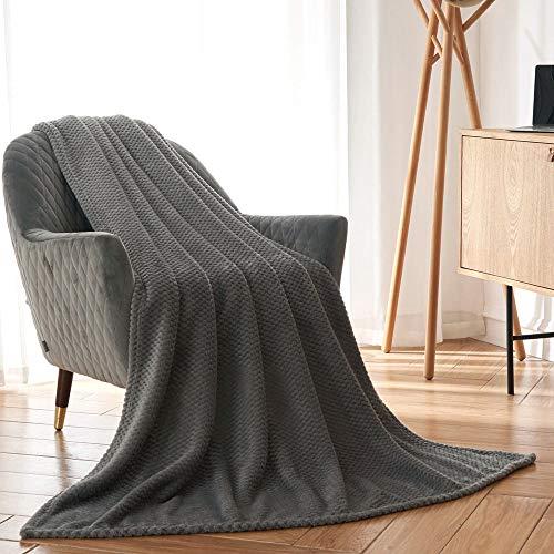 CAI TENG Flannel Fleece Blanket Super Soft Warm Cozy Bed Blanket Plush Lightweight Sofa Throw Blanket (Grey, Queen Size 60 x 80 Inches)