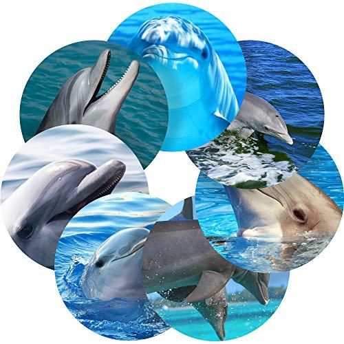 (Dolphins Reward Sticker Labels, 35 Stickers @ 1.4