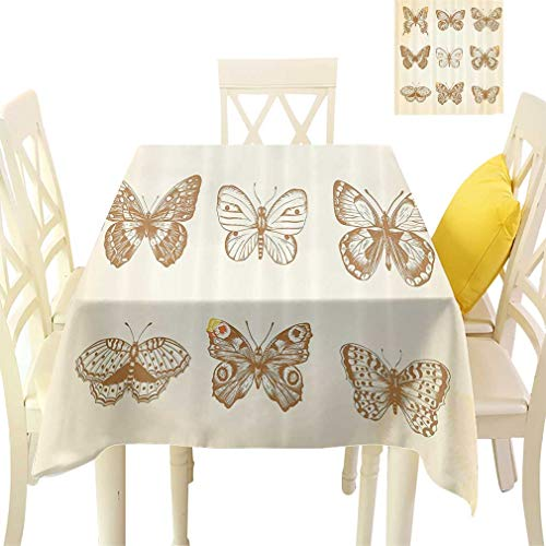 - Bohodecor Animal Tablecloths, Various Type of Butterflies on Vintage Color Background Spiritual Wings Design Square Fabric Table Covers for Dining Room Kitchen, 36'' x 36'' Cream Sand Brown