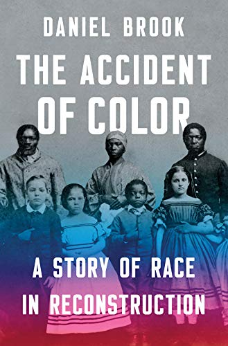 The Accident of Color: A Story of Race in Reconstruction (The Story Of Daniel)