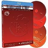 Evangelion 1.11 + Evangelion 2.22 - Edición Coleccionista (Blu-Ray + DVD + Libro) [Blu-ray]