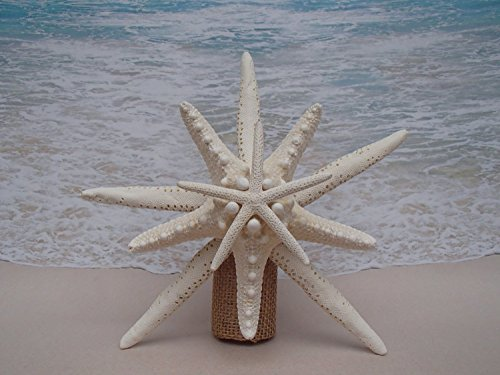 Starfish Tree Topper - 6-8