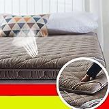 FDCVS Tatami mattress student floor mat thicker bedroom-B 90x200cm(35x79inch)