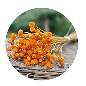 Sevem-D 50Pcs/Lot Natural Art Dried Fake Flower Arrangement Party DIY Artificial Flower for Home Garden Decoration,Orange 59