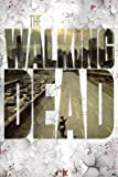The Walking Dead Streets TV Poster Print - 24x36 Poster Print, 24x36