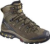 SALOMON Men's Quest 4D 3 GTX Backpacking Boots, Wren/Bungee Cord/Green Sulphur, 13 M US