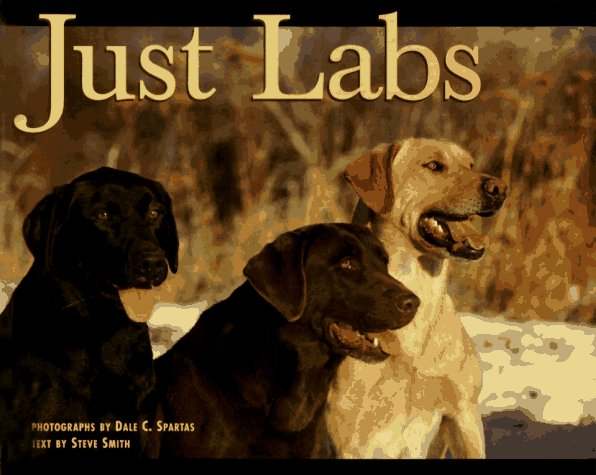 Just Labs - 1