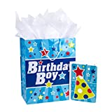 Hallmark Large Birthday Gift Bag with Tissue Paper and Card (Birthday Boy)
