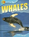 Whales, Sally Morgan, 1595661220