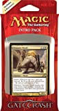 Magic the Gathering (MTG) Gatecrash Intro Pack: Orzhov Oppression (Includes 2 Booster Packs)