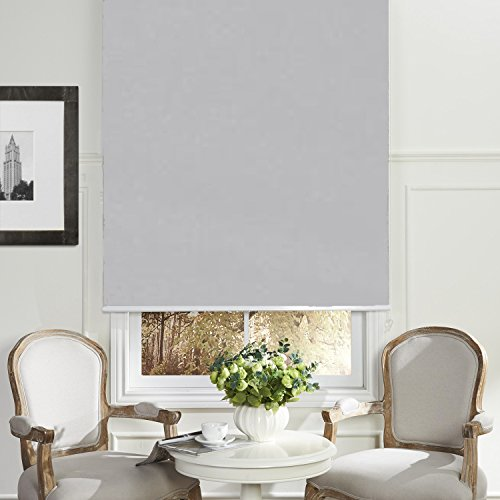 Custom Fabric Grey (PASSENGER PIGEON Cordless Thermal Insulated 100% Blackout Waterproof Fabric Custom Window Roller Shades Blinds,48