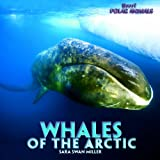 Whales of the Arctic, Sara Swan Miller, 1435827430