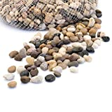 Royal Imports 5lb Small Decorative Ornamental River Pebbles Rocks for Fresh Water Fish Animal Plant Aquariums, Landscaping, Home Decor etc. with Netted Bag, Natural For Sale
