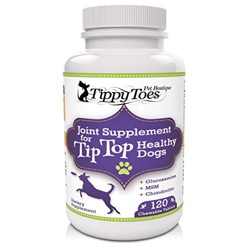 GLUCOSAMINE for Dogs Hip and Joint Supplement with MSM Chondroitin and Vitamin C - 120 BEEF flavor HIGH STRENGTH 800mg Natural Chewable JOINT AID Tablets For Dog Arthritis Pain Relief & Hip Dysplasia