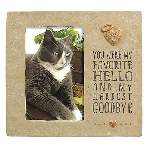 Grasslands Road 4-Inch x 6-Inch Pet Memorial Cement Picture Frame