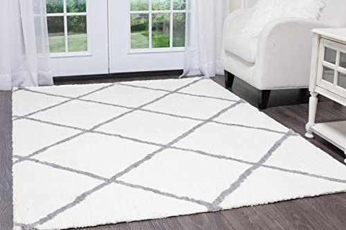 Home Dynamix Ramapo Yarra Area Rug Ultra Plush Shag Rug Soft and Cozy Microfiber Ivory-Gray, 7 10 x10 2