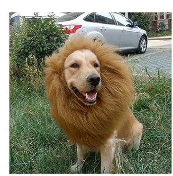 Freefisher Peluca del león Peluca del Perro Traje del Animal doméstico Disfraz(M 40*