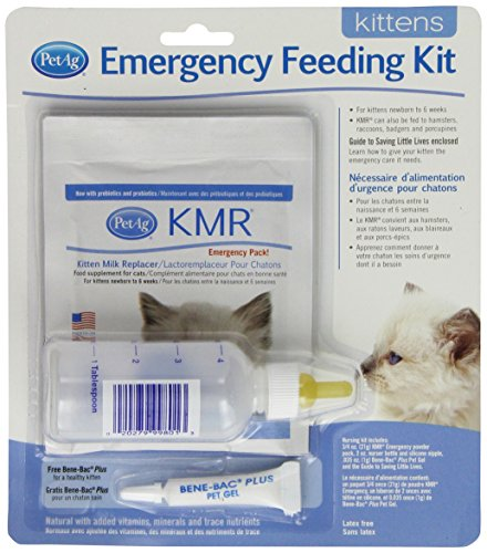 PetAg Kitten Milk Replacer (KMR) Emergency Feeding Kit
