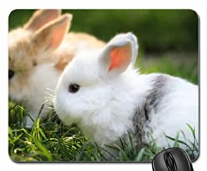 Beautiful Cute Bunnies Mouse Pad, Mousepad