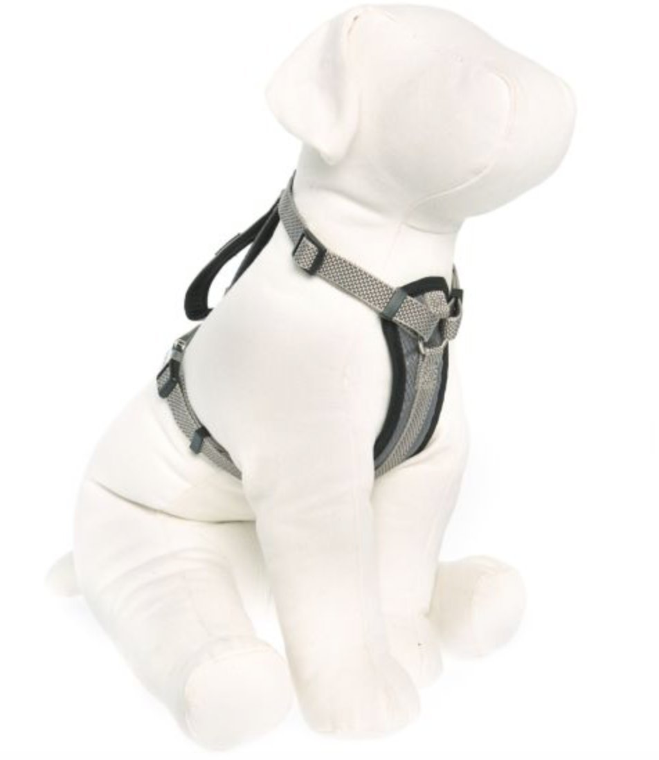KONG Comfort Padded Chest Plate Dog Harness offered by Barker Brands Inc(Medium, Grey)