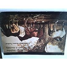 George Stubbs: Art, Animals and Anatomy