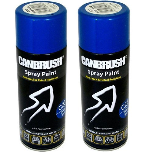 Access 2 X Canbrush Spray Paint For Metal Plastic Wood