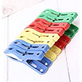Pooqdo 8PCS Beach Towel Clips in Fun Bright Prevents Towels Blowing Away