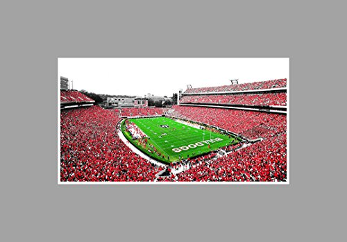 Georgia - College Football Stadium - 36x20 Matte Poster Print Wall Art TOC (Best College Football Stadiums)