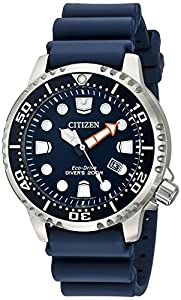Citizen Eco-Drive Diver Watch