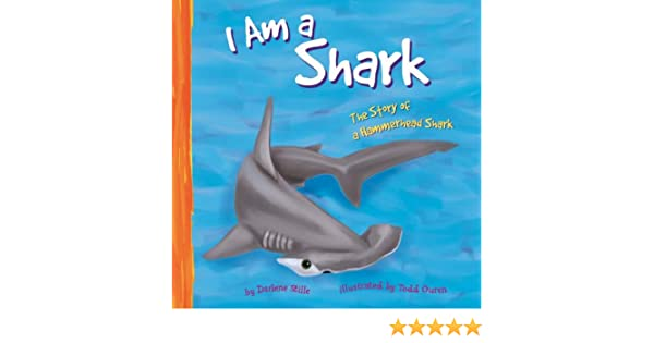I am a shark the life of a hammerhead shark i live in the ocean i am a shark the life of a hammerhead shark i live in the ocean darlene r stille todd ouren 9781404805996 amazon books fandeluxe Gallery